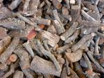 Leña seca de Encina